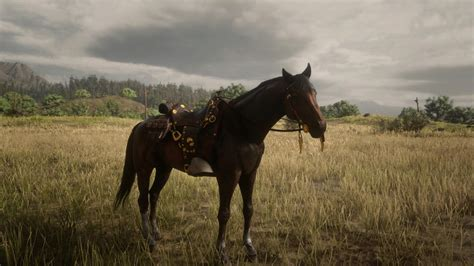 dead saddles rockstar gamepur screengrab via playstation selles meilleures dans