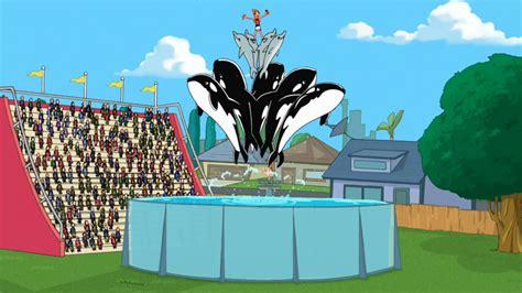 Phineas And Ferb Backyard Episode by Backyard Aquarium Disney Wiki