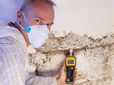 mold inspection annapolis md