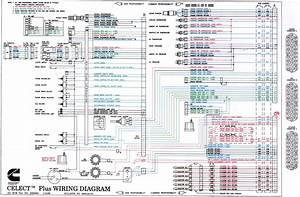 Cummins Celect Plus Ecm Wiring Diagram Gallery