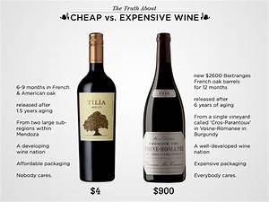 The Truth About Cheap vs. Expensive Wine | Wine Folly