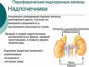 Аденома надпочечников симптомы лечение