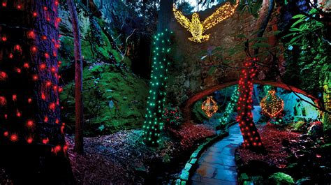 rock city enchanted lights best places to visit santa in chattanooga localfare