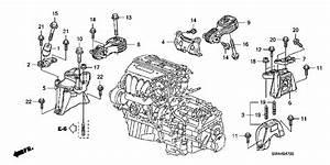 Coxim Cal U00e7o Direito Motor Tenacity Honda Crv Cr