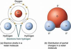 A Water Molecule Consists Of Two Hydrogen Atoms Covalently