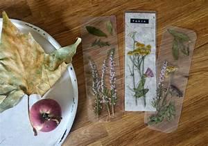 Aus Blättern Basteln : lesezeichen aus bl ttern bl ten basteln miniundmami ~ Lizthompson.info Haus und Dekorationen
