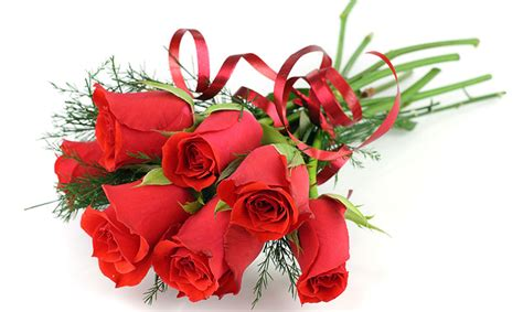 We did not find results for: Get a $100 1-800-Flowers Gift Card! - Get it Free