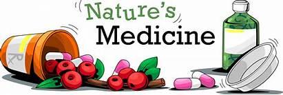 Medicine Nature Natures Beth Judy Written
