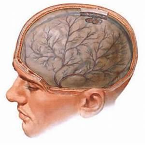 Гипертоническая болезнь симптомы причины и лечение