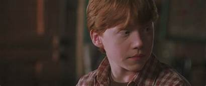Weasley Ron Potter Harry Chamber Secrets Ronald
