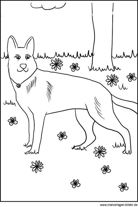 ausmalbilder von hunden kostenlose hund vorlage zum