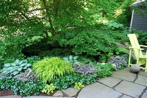 shade plants zone 5 shade garden plan perennial shade garden shade garden plan zone 5 alexstand club