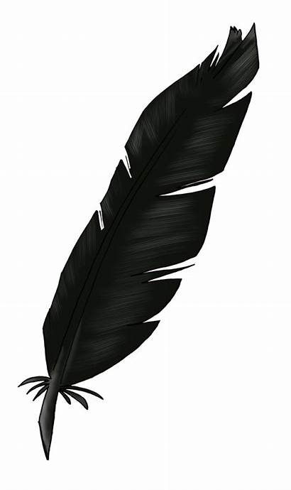 Feather Feathers Clipart Transparent Clip Clipground Birds