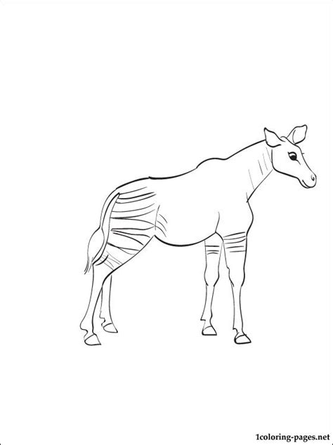 okapi coloring page  print  coloring pages