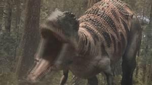 Image - Carcharodontosaurus-1.png | Planet Dinosaur Wiki ...