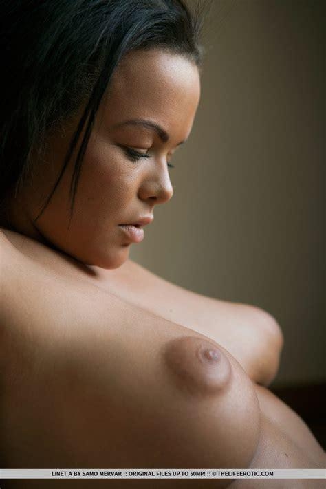 Areola Puffy Nipples Xxgasm
