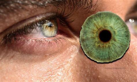Datos curiosos sobre personas con ojos verdes - Pagina de Fans