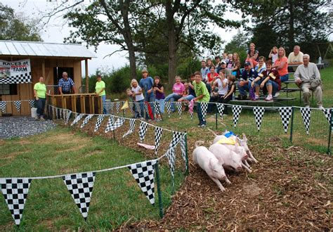 pig race cool - web - Back Home on the Farm
