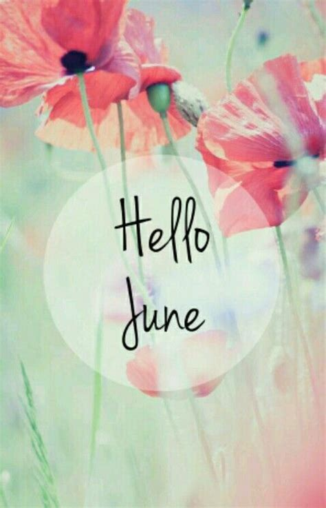 Hello June Wallpaper ♥♥♥  Seasons Summer Pinterest