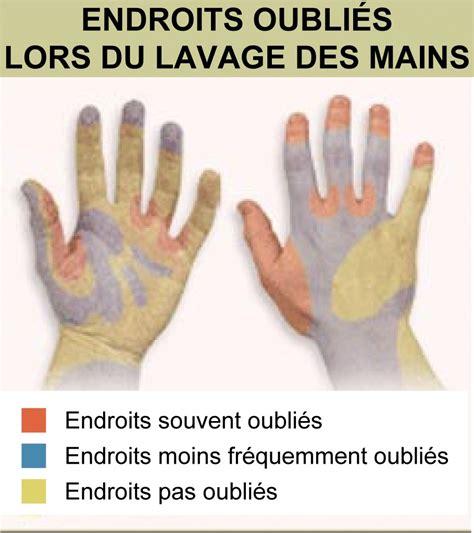 protocole de nettoyage d une cuisine hygiène des mains l 39 étude qui fait peur