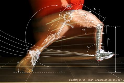 Runners Injury Prevention Strength Training Workouts