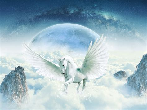 wallpaper unicorn guardian hd  creative graphics