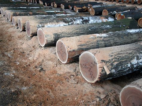 log sales appalachian hardwoods veneer logs