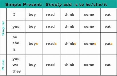 Present Tense Verbs Simple Form English Verb