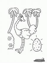 Coloring Ostrich Pages Printable Animal Egg Preschool Animals Popular Ostriches Kindergarten sketch template