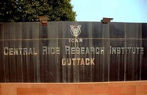 File:Central Rice Research Institute.jpg - Wikimedia Commons