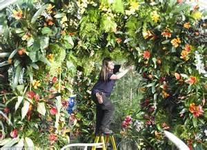 visitors treated   degrees heat  kew gardens
