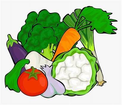 Vegetables Clipart Cut Lots Pngitem