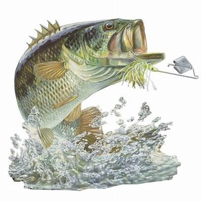 Bass Decal Fishing Sticker Skiff Buzz Fish