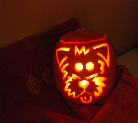 puppy pumpkin carving have a scairey halloween airecanada