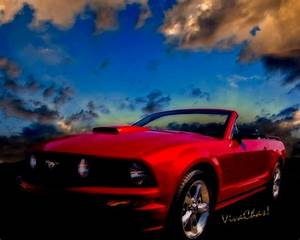 Ford Mustang GT 5th Generation Mustang Dream American Dream