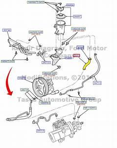 New Oem Power Steering Reservoir To Pump Hose 2004