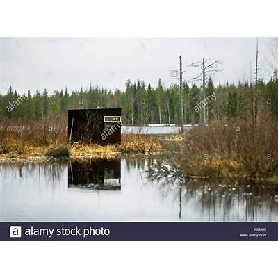 Finland Kuikka Lake Near Kuhmo. Ultima Taiga. Centre For