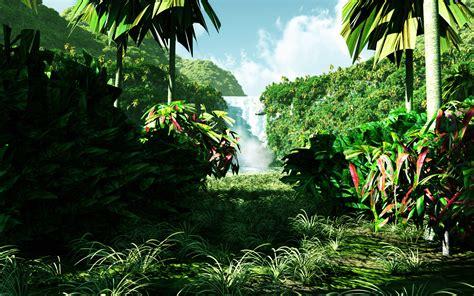 Dschungel | Webstar Blog