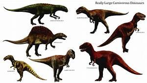 Really Large Carnivorous Dinosaurs - Carnivore Dinosaurs ...