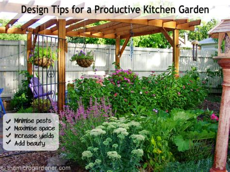 Kitchen In Your Garden by Design Tips For A Productive Kitchen Garden The Micro