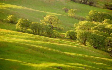 Green Hills Wallpapers  Wallpaper Cave