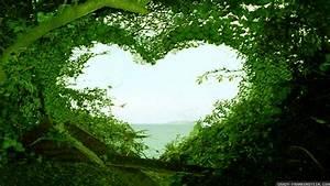 Nature Love Wallpaper HD