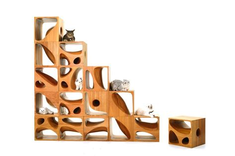 cozy working room with a set of wooden catable modern modular wooden furniture for cats