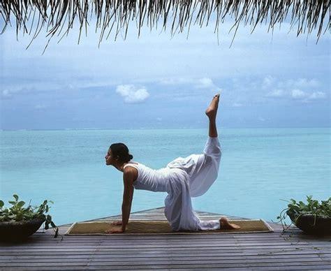 foods  yogis  yogis  eat   healthier mind body soul bookyogaretreatscom