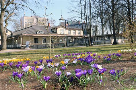 Pavasara ziedi izdaiļo Valmieru   eLiesma