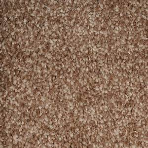 Discount carpet cheap carpet for Brown carpet colours