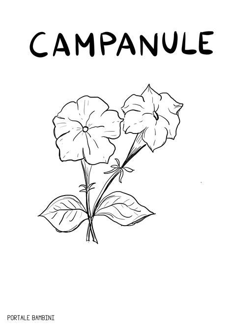 immagini di fiori da stare e colorare fiori da colorare e disegnare per grandi e bambini
