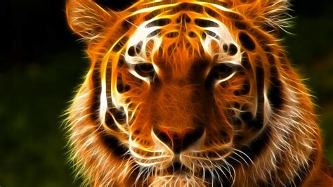 tiger face art    hdtv p wallpaper
