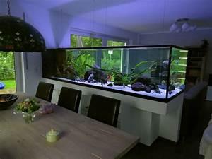 Aquarium Als Raumteiler : mein traumbecken ist fertig 3 meter malawisee seite 4 ~ Michelbontemps.com Haus und Dekorationen