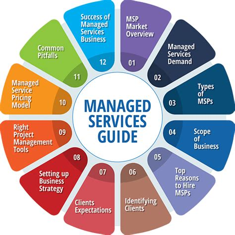 establishing  managed services business  detailed guide